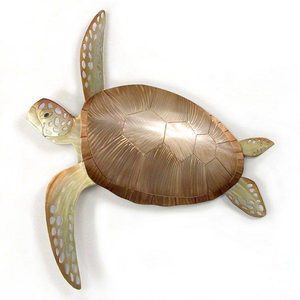 single bronze and green sea turtle swimming