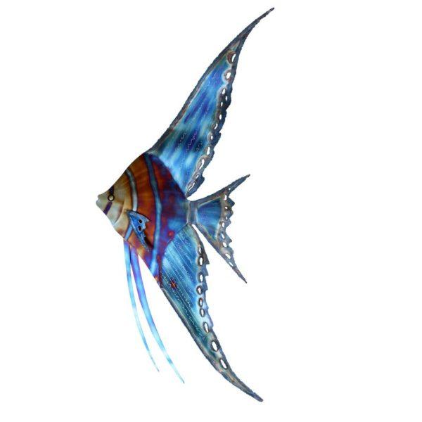 Angelfish Stainless Steel