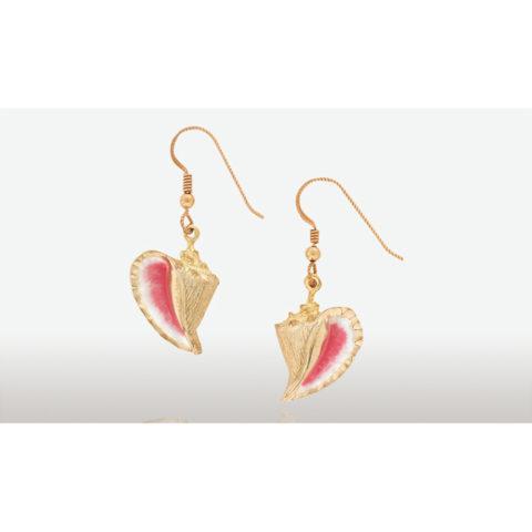 14 karat gold conch shell earrings