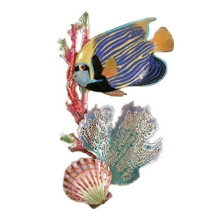 Emperor Angelfish, Braching Coral, Scallop