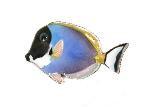 Powder-Blue Surgeonfish copper wall art by bovano of cheshire